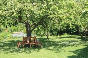 Apfelgarten mit Baumbank - Kopie - Kopie