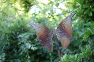 Schmetterling_klein